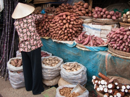 Da Lat, Vietnam - December 6, 2008: A woman sells vegetables in an open market. Agriculture is by far the most important economic sector in Vietnam.