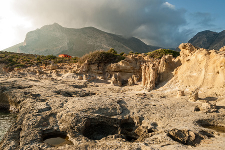 petrified fossil: View of the petrified forest of Cape Maleas in Laconia, Greece