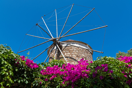 kos: Old traditional windmill and bougainvillea in Kos island, Greece Stock Photo