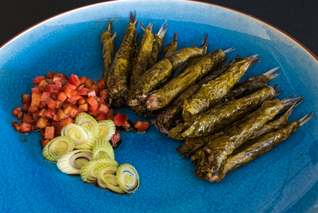 hojas parra: Anchovies in vine leaves, served with tomato salad and onions in blue plate Foto de archivo