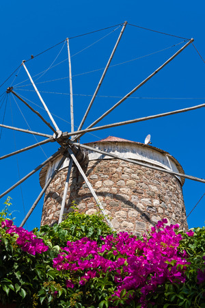 Old traditional windmill and bougainvillea in Kos island, Greece Stock Photo