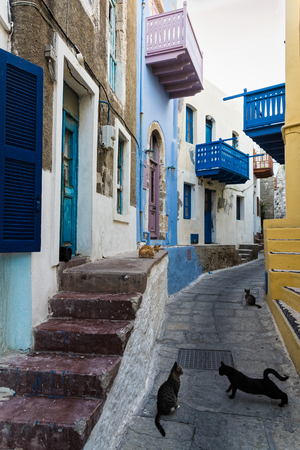 Narrow street with colorful houses and cats in the traditional village of Mandraki, Nisyros island, Greece