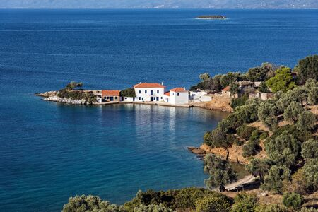 Typical mediterranean landscape with white houses, olive trees and blue sea in Pagasetic Gulf in Thessaly, Greece