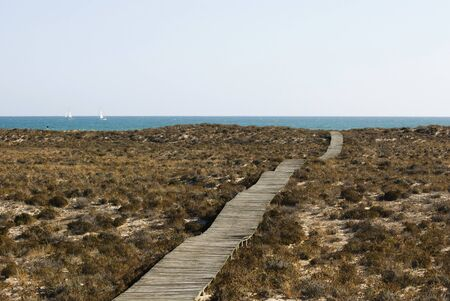Wooden path to the sea Stock Photo - 12805036