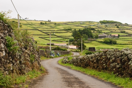 agriculture azores: Rural Landscape of Sao Jorge island, Azores