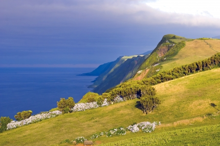 agriculture azores: Afternoon view over cliffs of Sao Jorge island, Azores Stock Photo