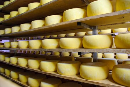 Cheese in storage, Sao Jorge, Azores Stock Photo