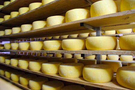 Cheese in storage, Sao Jorge, Azores Stock Photo