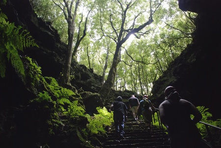Gruta das Torres cave, Pico island, Azores, Portugal