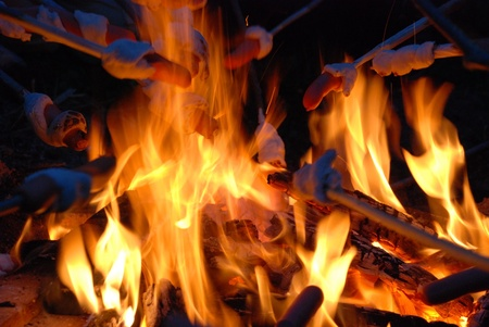 barbecuing: Barbecuing sausages at flames of campfire Stock Photo