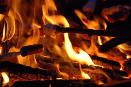 Barbecuing sausages at flames of campfire Stock Photo - 18849284