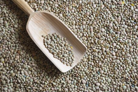 Raw green and brown lentil with wooden scooper photo