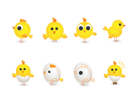 chicken family: Vector illustration of yellow chickens