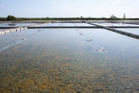 evaporacion: Sal estanques de evaporaci�n en granja de la sal, Aveiro, Portugal Foto de archivo