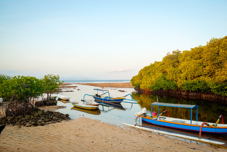 Mangrove forest in low tide with typical indonesian boats, Nusa Lembongan, Bali, Indonesia