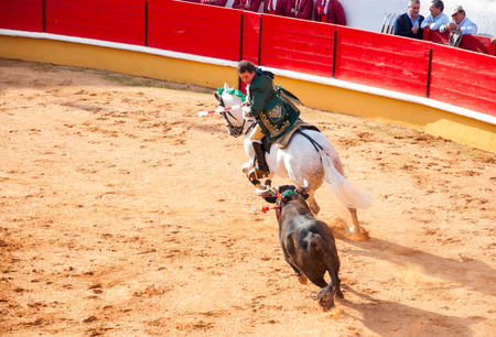 TOMAR, PORTUGAL - OCTOBER 24: Cavaleiro on the horse fight with the bull and stabing bandarilha to the bull in portuguese style bullfighting in Tomar on October 24, 2010 Editorial