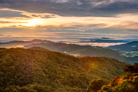 cameron highlands: Sunrise over Gunung Brinchang misty jungle in Cameron highlands, Malaysia