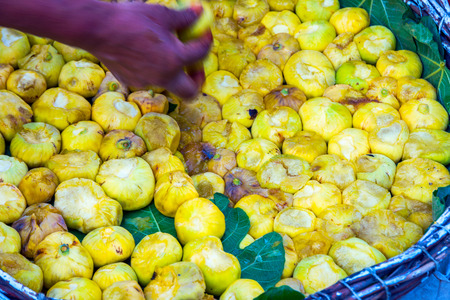 Ripe yellow figs in a basket and hand picking them up