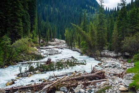 Stunning landscape of forest and river in Karakol national park Kyrgyzstan Stock Photo