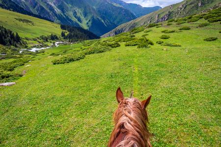 Eerste persoonsmening van het paard terug naar steile bergweg, Altyn Arashan, Kyrgyzstan Stockfoto - 88570848