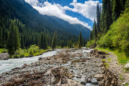 River and forest in Karakol national park, Kyrgyzstan Stock Photo