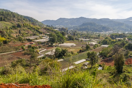 Green houses in valley close to Chiang Mai to grow fruits and vegetables, Thailand