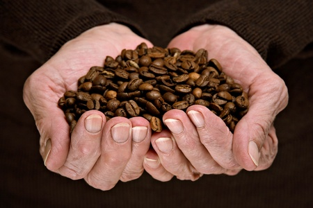 Roasted coffee beans in senior woman hands  photo