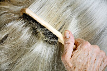 Senior woman brushing her hair - closeup detail photo