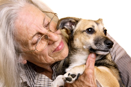 animal shelter: Senior woman with cute mixed breed puppy Stock Photo