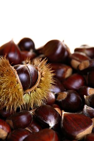 Chestnuts against white background photo