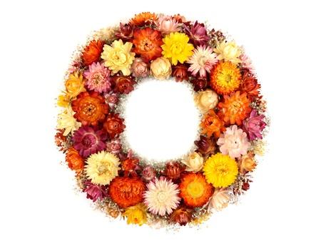 flores secas: Corona de flores aisladas en blanco