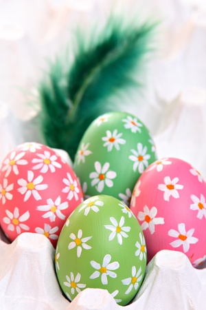 Colorful hand painted easter eggs with feathers in egg carton Stock Photo - 12718192