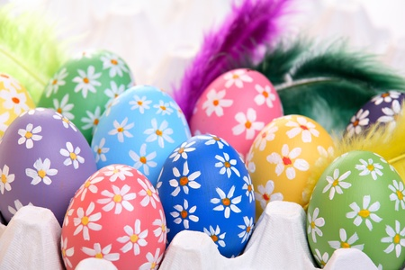 Colorful hand painted easter eggs with feathers in egg carton Stock Photo - 12718286
