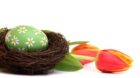 Hand painted green easter egg in wooden nest, with tulips, isolated on white photo