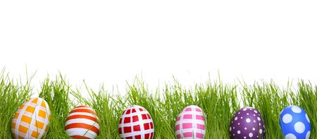Hand-painted Easter eggs hidden in the grass, isolated on white with copy space  photo