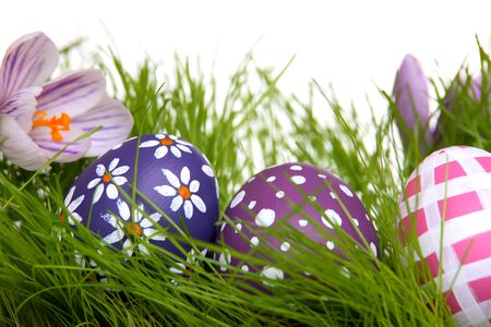 Hand-painted Easter eggs with crocus flowers hidden in the grass  photo