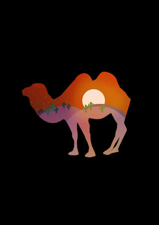 goodness: Double Exposure Camel with Nigh t Landscape Illustration Stock Photo