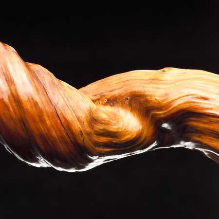figurative: liana close up