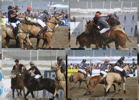 Beach polo collage