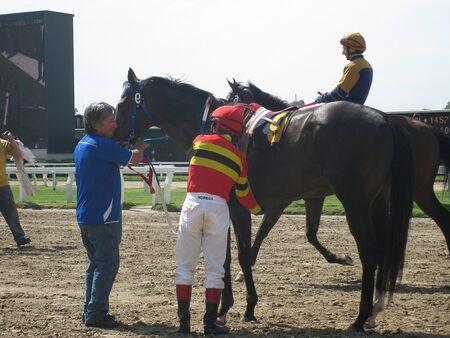 Na paardenrace Redactioneel