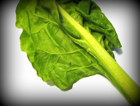 Chard leaf Stock Photo