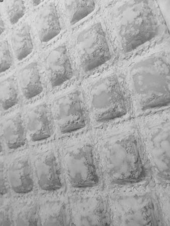 ravioli background