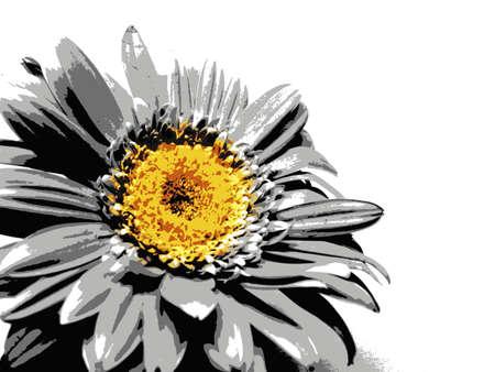 Gerbera flower / s in bitmap style Фото со стока