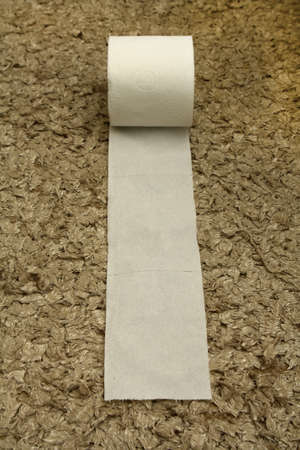 A roll of toilet paper, useful for your health and hygiene. Stock Photo - 10898345