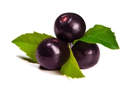 acai berry: The amazon acai fruit Stock Photo