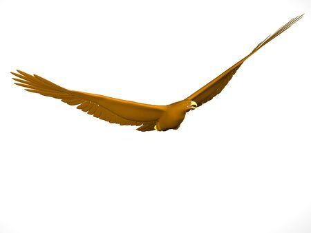 rendered: Rendered soaring eagle on neutral background