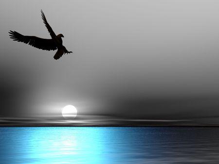 silhouette aquila: Silhouette aquila su un bianco e nero cielo e mare blu.  Archivio Fotografico