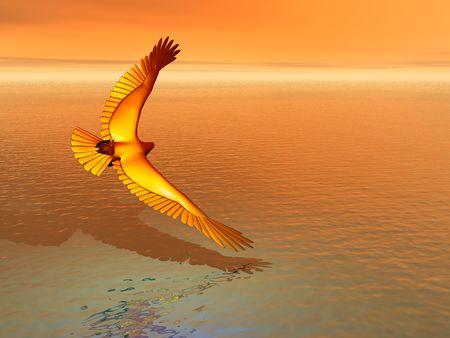 skimming: �guila real skimming la superficie del mar