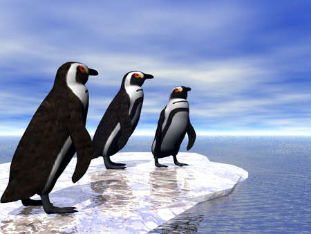 Three penguins on an ice flow