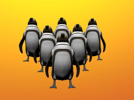 Penguin formation photo